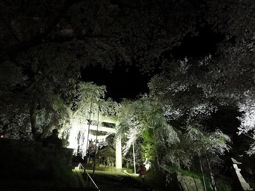 夜4.jpg