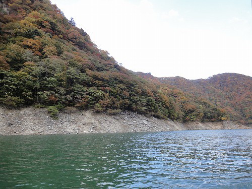 水4.jpg